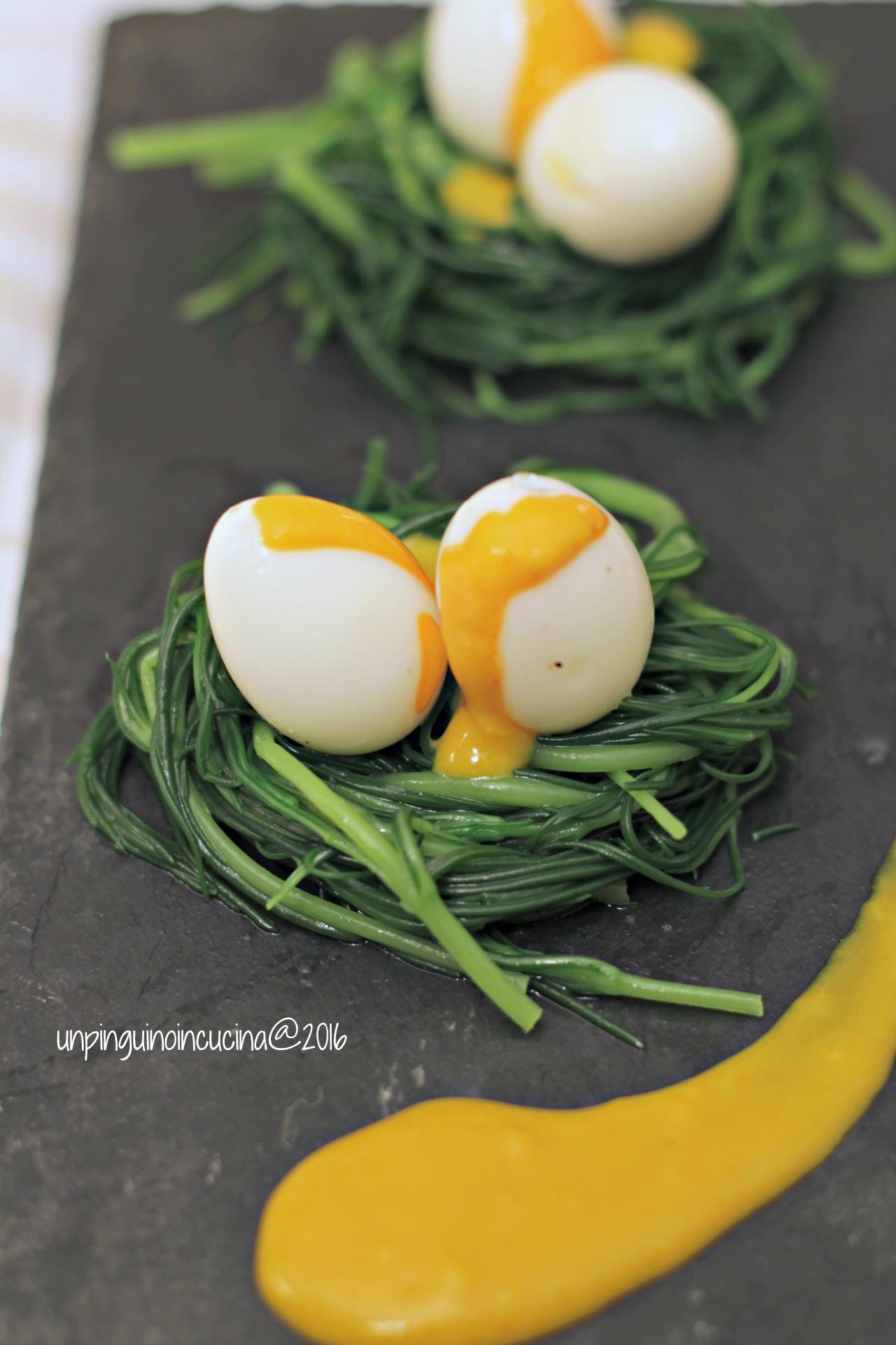 nidi-di-agretti-con-uova-di-quaglia-e-maionese-alla-curcuma
